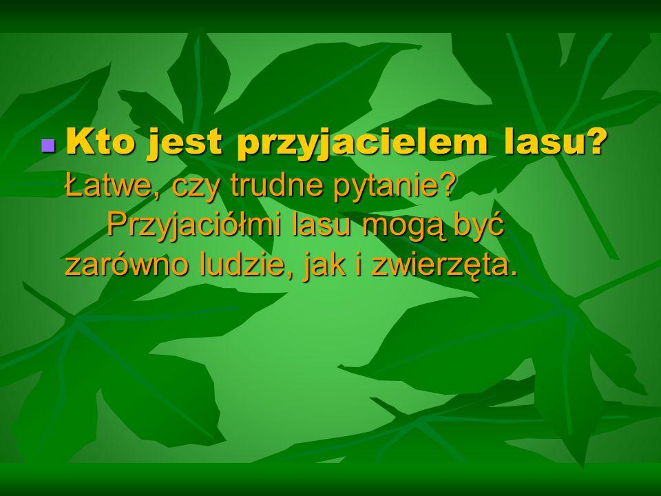 Kto jest przyjacielem lasu? Łatwe, czy trudne pytanie? Przyjaciółmi lasu mogą być zarówno ludzie, jak i zwierzęta. Kto jest przyjacielem lasu? Łatwe,