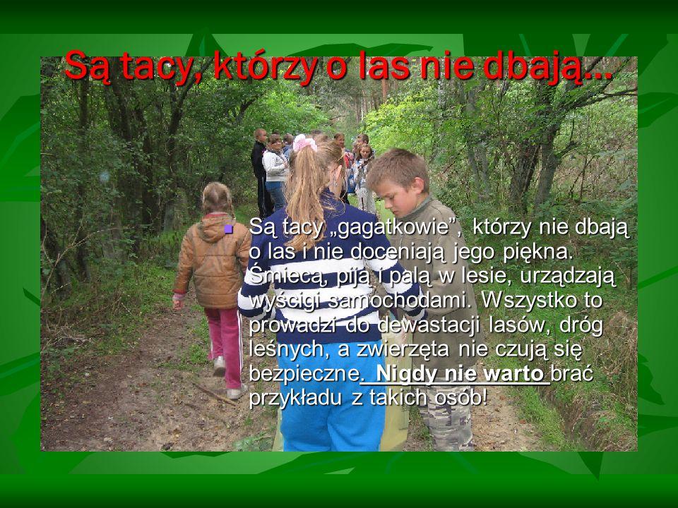 """Są tacy, którzy o las nie dbają… Są tacy """"gagatkowie"""", którzy nie dbają o las i nie doceniają jego piękna. Śmiecą, piją i palą w lesie, urządzają wyśc"""