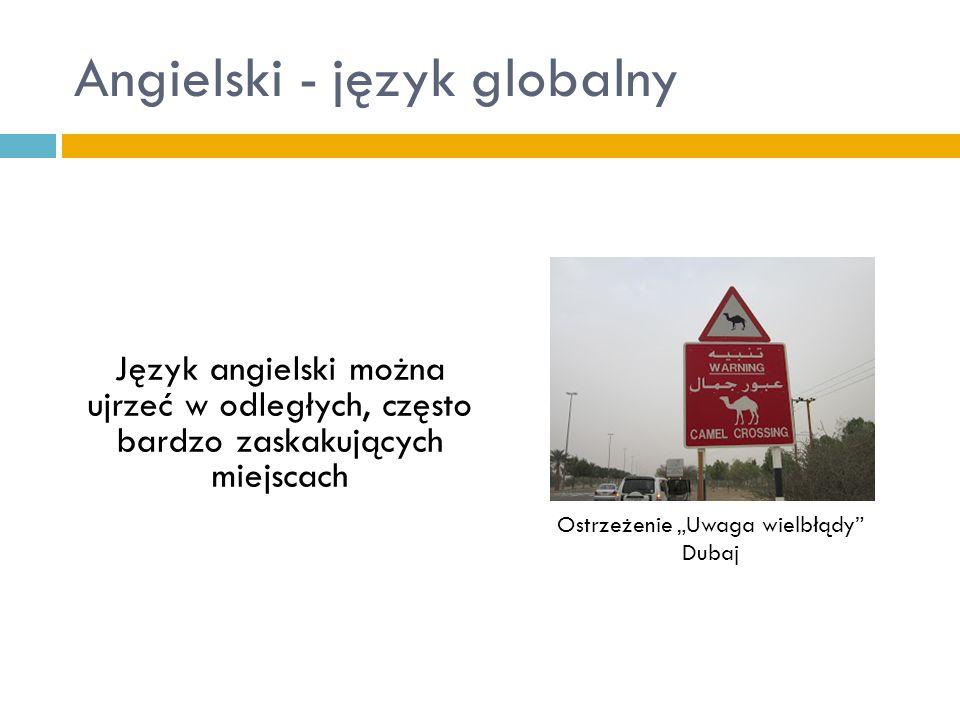 """Angielski - język globalny Język angielski można ujrzeć w odległych, często bardzo zaskakujących miejscach Ostrzeżenie """"Uwaga wielbłądy"""" Dubaj"""