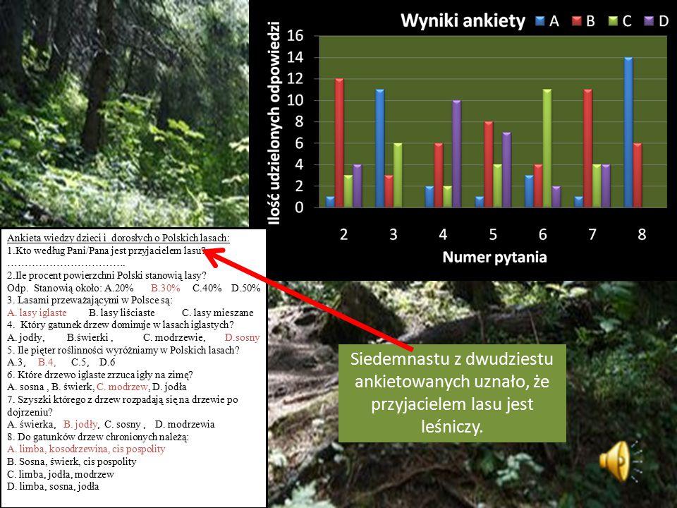 Według mnie to leśniczy najczęściej odwiedza las i w związku z tym ma najlepszą wiedzę na temat tego co dzieje się w lesie.
