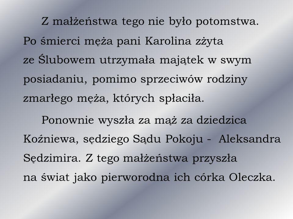 Nie ma dokumentów, które potwierdzają miejsce i datę zapoznania Aleksandry Bąkowskiej z Aleksandrem Świętochowskim, jednak domysły prowadzą do Warszawy jako pierwszego miejsca spotkania.