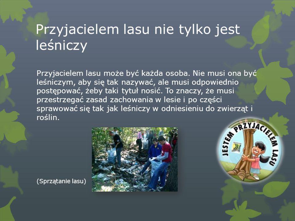 Przyjacielem lasu nie tylko jest leśniczy Przyjacielem lasu może być każda osoba. Nie musi ona być leśniczym, aby się tak nazywać, ale musi odpowiedni