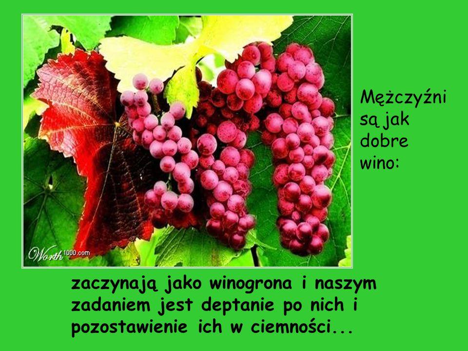 zaczynają jako winogrona i naszym zadaniem jest deptanie po nich i pozostawienie ich w ciemności... Mężczyźni są jak dobre wino:
