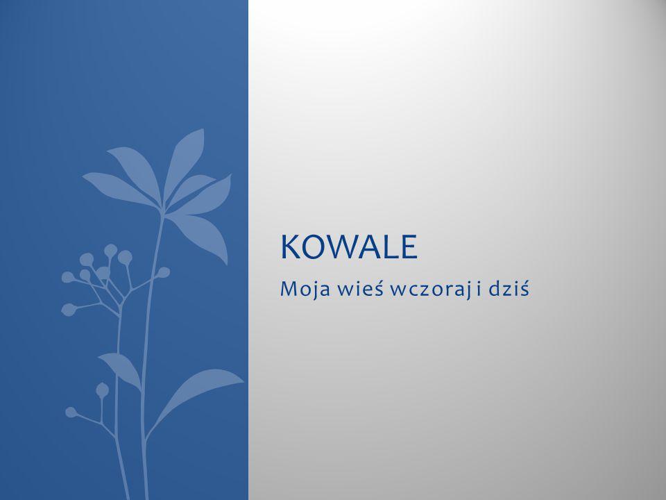 Żetony W majątku Kowale znaleziono dwa typy żetonów dominalnych.