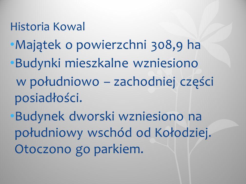 Przed 1945 rokiem Kowale należały do domeny państwowej.