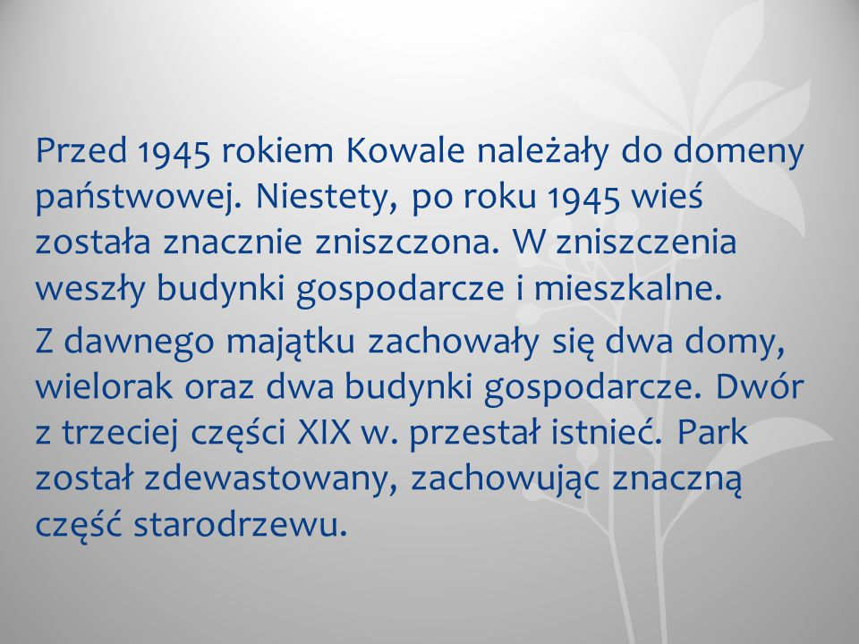 Przed 1945 rokiem Kowale należały do domeny państwowej. Niestety, po roku 1945 wieś została znacznie zniszczona. W zniszczenia weszły budynki gospodar