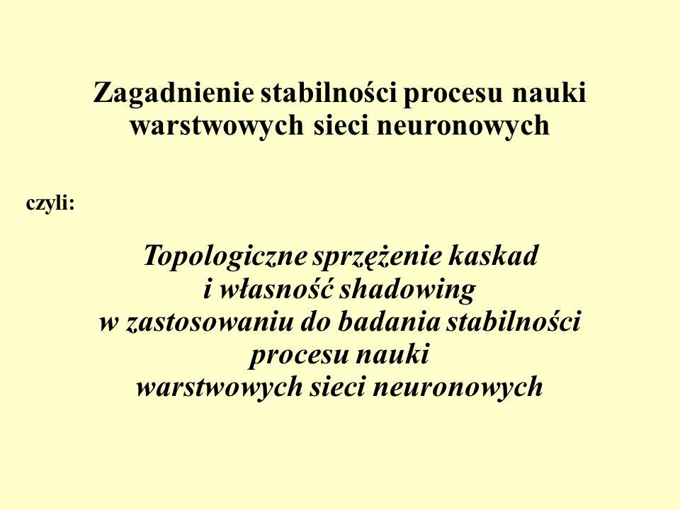 Zagadnienie stabilności procesu nauki warstwowych sieci neuronowych czyli: Topologiczne sprzężenie kaskad i własność shadowing w zastosowaniu do badan