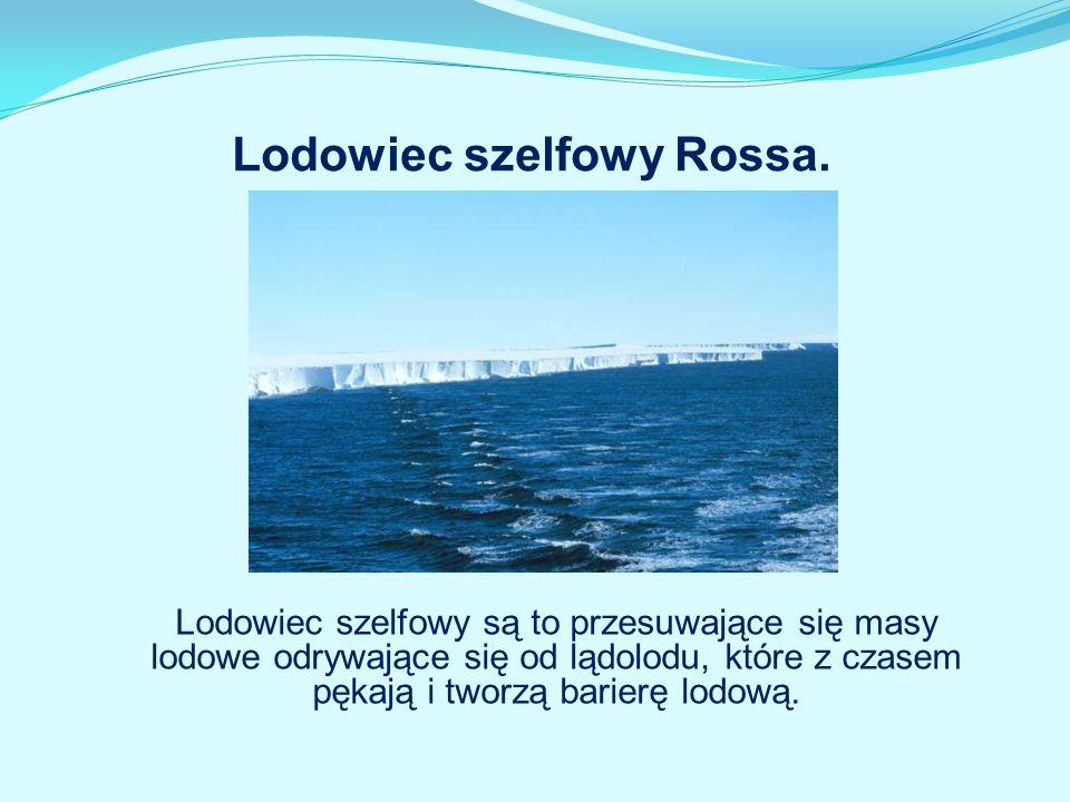 Lodowiec szelfowy Rossa. Lodowiec szelfowy są to przesuwające się masy lodowe odrywające się od lądolodu, które z czasem pękają i tworzą barierę lodow