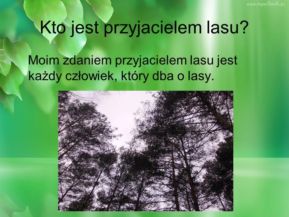 Kto jest przyjacielem lasu? Moim zdaniem przyjacielem lasu jest każdy człowiek, który dba o lasy.