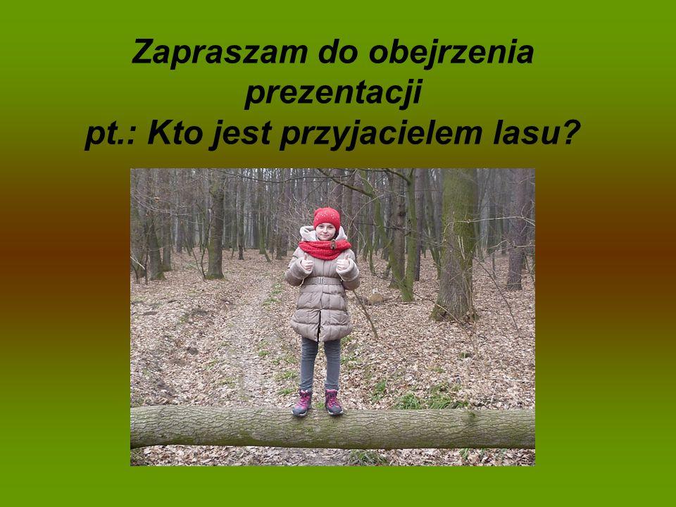 Zapraszam do obejrzenia prezentacji pt.: Kto jest przyjacielem lasu?
