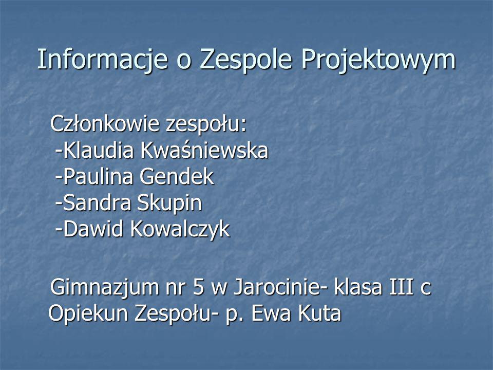 Informacje o Zespole Projektowym Członkowie zespołu: -Klaudia Kwaśniewska -Paulina Gendek -Sandra Skupin -Dawid Kowalczyk Członkowie zespołu: -Klaudia