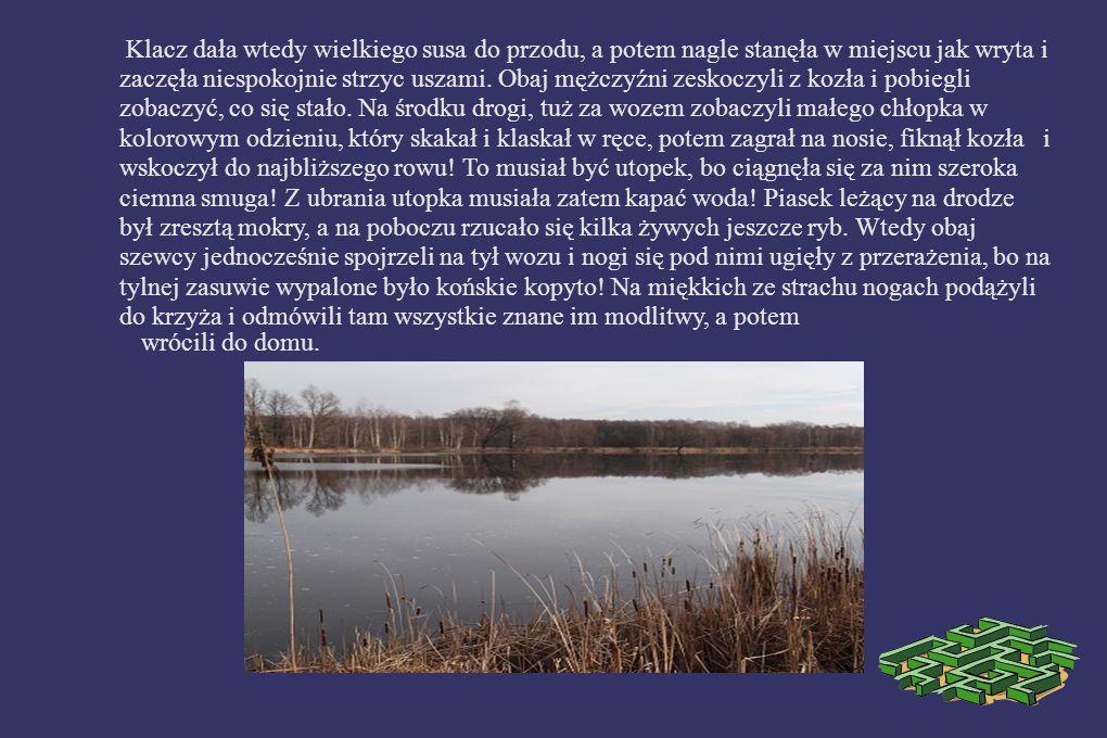 UTOPEK Z KOŚCIELNIOKA Kościelniok to duży staw po prawej stronie przy drodze do Rybnika (to już teren Wygody, od ulicy Szczejkowskiej oddziela go dzielnica Kradziejówka), który niegdyś przynależał do dóbr kościelnych, stąd nazwa.