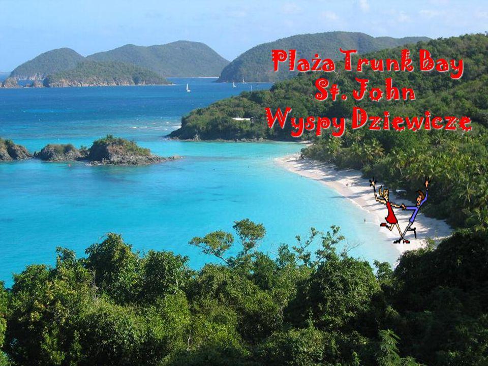 Smuggler s Cove Torto Wyspy Dziewicze