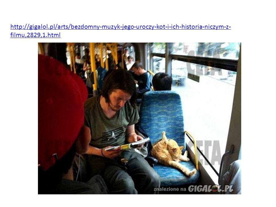 http://gigalol.pl/arts/bezdomny-muzyk-jego-uroczy-kot-i-ich-historia-niczym-z- filmu,2829,1.html