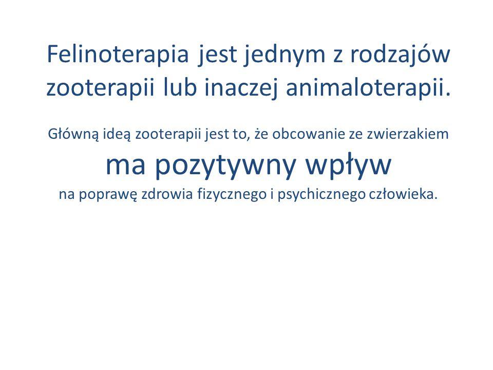 Felinoterapia jest jednym z rodzajów zooterapii lub inaczej animaloterapii.