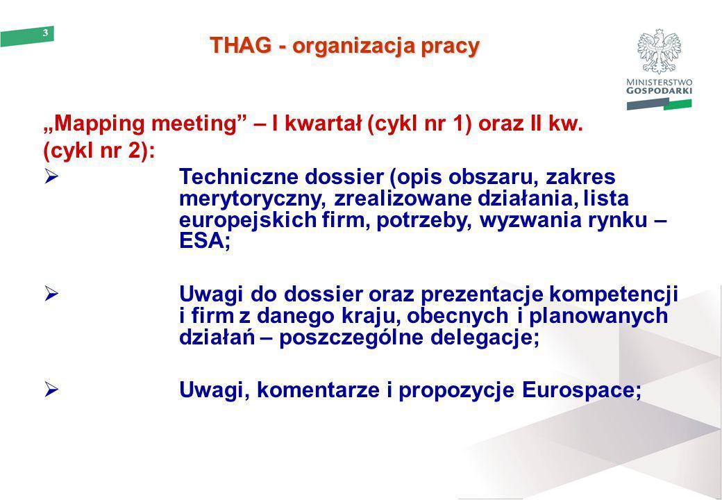 """3 THAG - organizacja pracy THAG - organizacja pracy """"Mapping meeting"""" – I kwartał (cykl nr 1) oraz II kw. (cykl nr 2):  Techniczne dossier (opis obsz"""