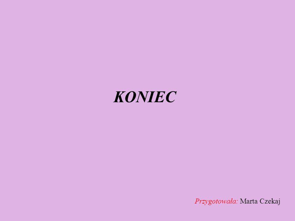 KONIEC Przygotowała: Marta Czekaj