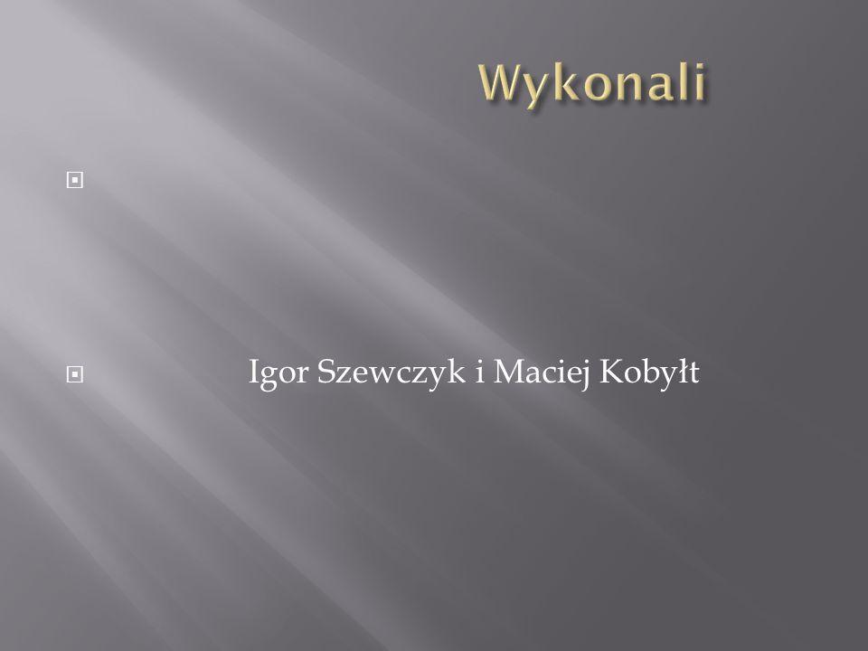   Igor Szewczyk i Maciej Kobyłt