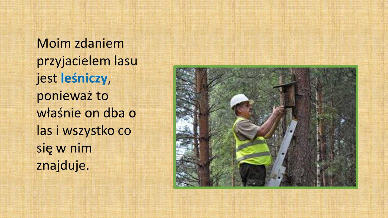 Moim zdaniem przyjacielem lasu jest leśniczy, ponieważ to właśnie on dba o las i wszystko co się w nim znajduje.