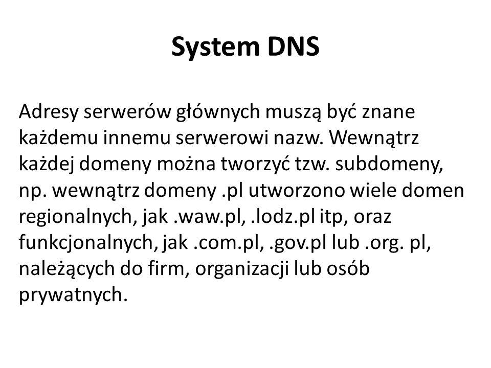 Adresy serwerów głównych muszą być znane każdemu innemu serwerowi nazw. Wewnątrz każdej domeny można tworzyć tzw. subdomeny, np. wewnątrz domeny.pl ut