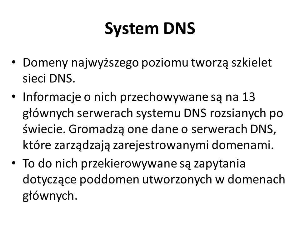 System DNS Domeny najwyższego poziomu tworzą szkielet sieci DNS. Informacje o nich przechowywane są na 13 głównych serwerach systemu DNS rozsianych po