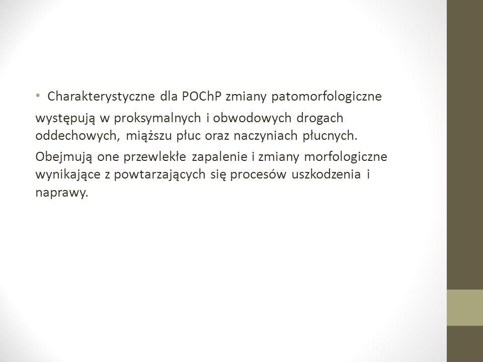Charakterystyczne dla POChP zmiany patomorfologiczne występują w proksymalnych i obwodowych drogach oddechowych, miąższu płuc oraz naczyniach płucnych.