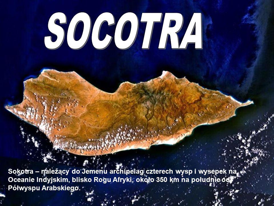 Socotra Sokotra – należący do Jemenu archipelag czterech wysp i wysepek na Oceanie Indyjskim, blisko Rogu Afryki, około 350 km na południe od Półwyspu Arabskiego.