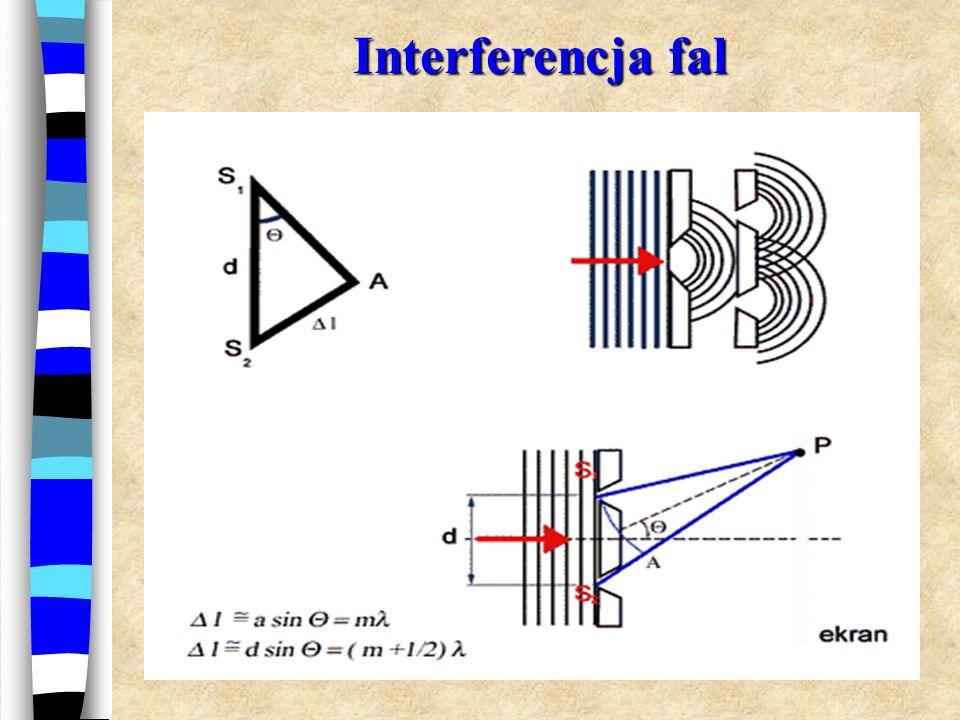 Lornetka pryzmatyczna Przekrój lornetki polowej pryzmatycznej (z pryzmatami porro), zaznaczono bieg promieni świetlnych.