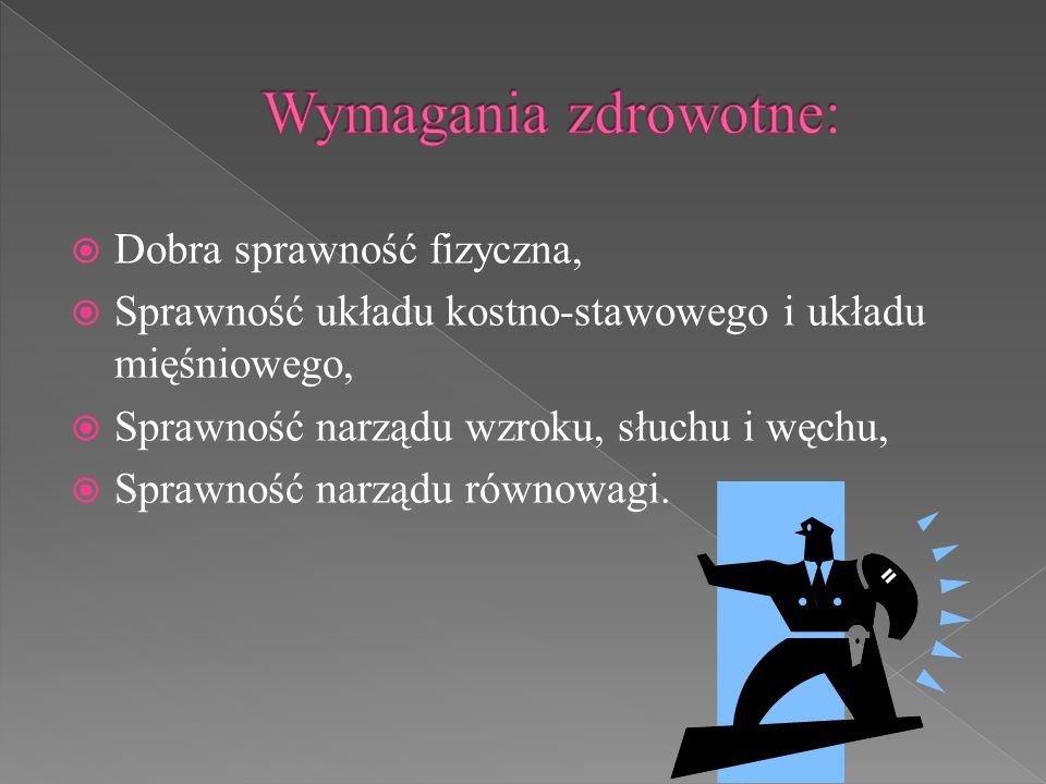  Dobra sprawność fizyczna,  Sprawność układu kostno-stawowego i układu mięśniowego,  Sprawność narządu wzroku, słuchu i węchu,  Sprawność narządu