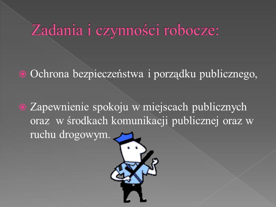  Ochrona bezpieczeństwa i porządku publicznego,  Zapewnienie spokoju w miejscach publicznych oraz w środkach komunikacji publicznej oraz w ruchu dro