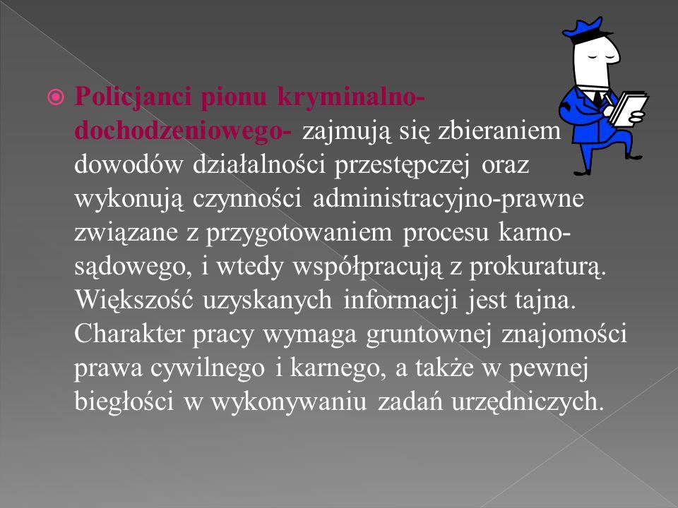  Pion prewencji- obejmuje dzielnicowych utrzymujących kontakt ze społecznością lokalną policjantów ruchu drogowego dbających o ład i bezpieczeństwo na drodze, oddziały kontrolujące różne rejony miasta, a także specjalistów- policjantów dyżurnych przyjmujących zgłoszenia spraw wymagających interwencji policji i przekazujących zlecenia patrolom i wyspecjalizowanym oddziałom prewencji.