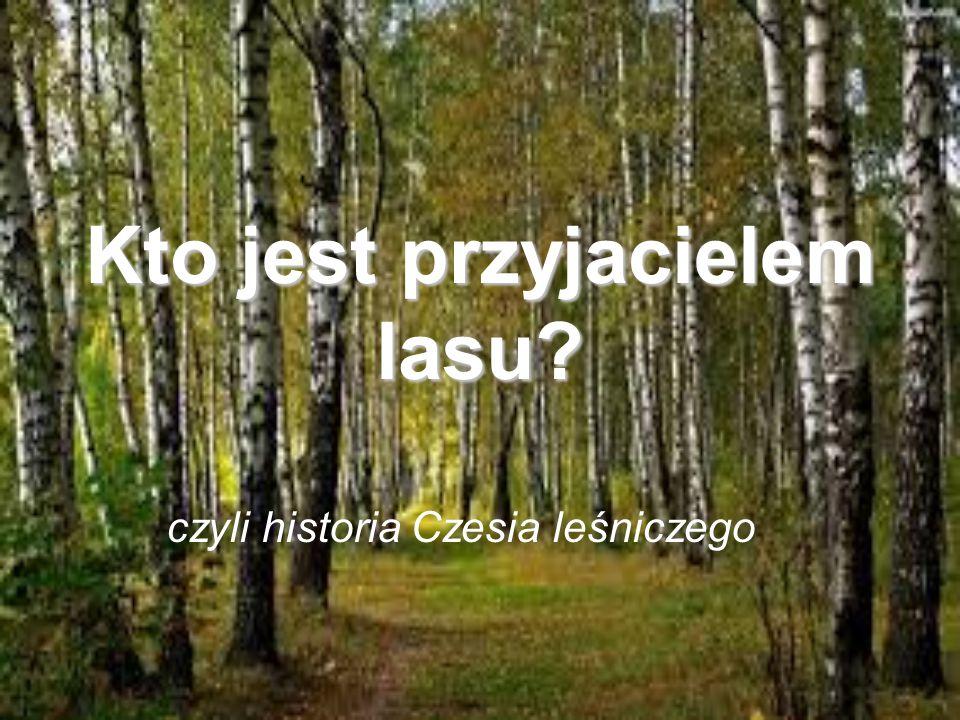 Cześć.Jestem Czesio. Kocham las, wszystkie zwierzęta, rośliny i jestem leśniczym.