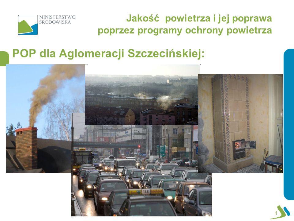 Roman Głaz Departament Zmian Klimatu i Ochrony Atmosfery Warszawa, dnia 2 czerwca 2011 r.