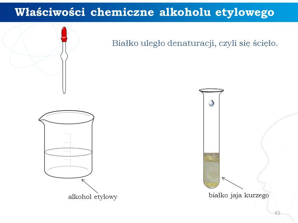43 Właściwości chemiczne alkoholu etylowego alkohol etylowy Białko uległo denaturacji, czyli się ścięło. białko jaja kurzego