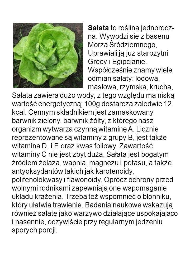 Malina ma witaminy takie jak ; E,B1,B2,B6 a także kwasy organiczne jak choćby: cytrynowy, jabłkowy salicylowy.