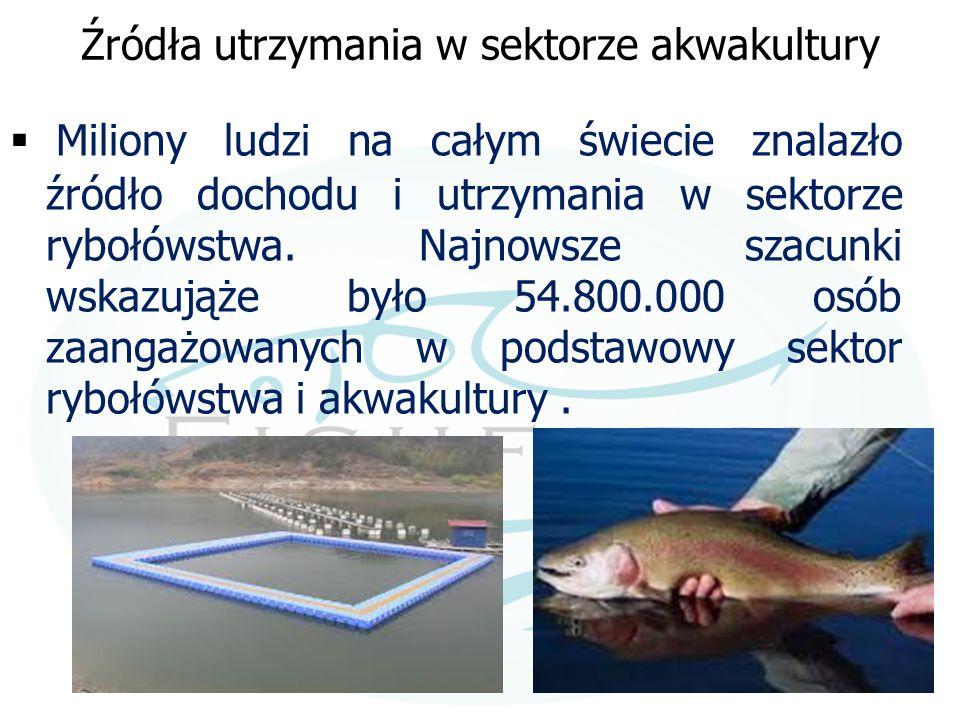 Źródła utrzymania w sektorze akwakultury  Miliony ludzi na całym świecie znalazło źródło dochodu i utrzymania w sektorze rybołówstwa. Najnowsze szacu
