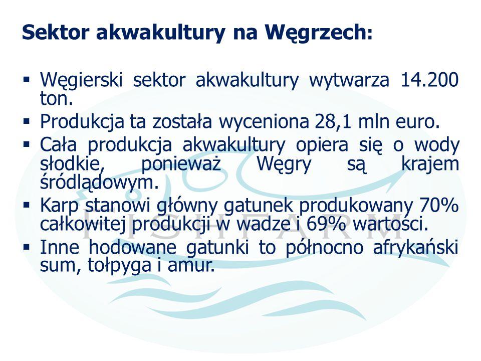 Sektor akwakultury na Węgrzech :  Węgierski sektor akwakultury wytwarza 14.200 ton.  Produkcja ta została wyceniona 28,1 mln euro.  Cała produkcja