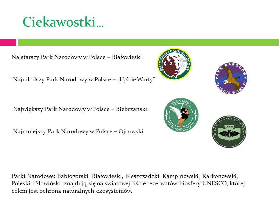 """Ciekawostki … Najstarszy Park Narodowy w Polsce – Białowieski Najmłodszy Park Narodowy w Polsce – """"Ujście Warty"""" Największy Park Narodowy w Polsce – B"""
