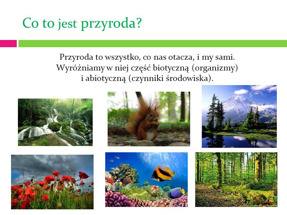 Co to jest przyroda? Przyroda to wszystko, co nas otacza, i my sami. Wyróżniamy w niej część biotyczną (organizmy) i abiotyczną (czynniki środowiska).