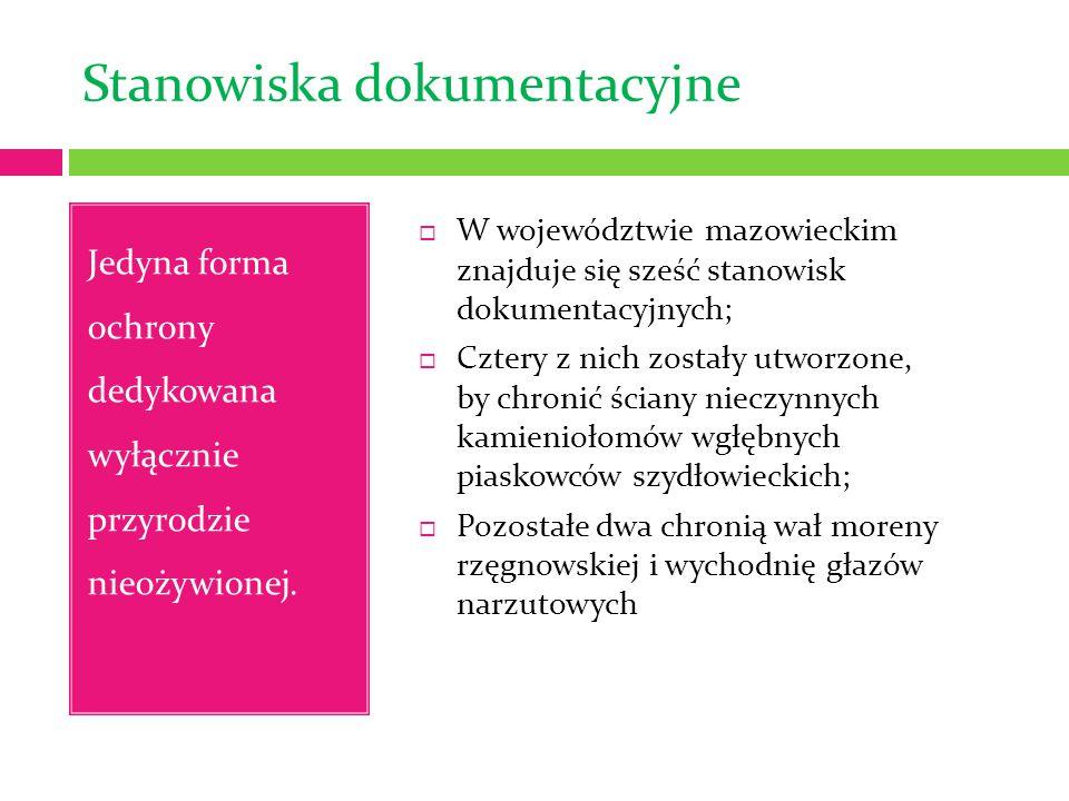 Stanowiska dokumentacyjne Jedyna forma ochrony dedykowana wyłącznie przyrodzie nieożywionej.  W województwie mazowieckim znajduje się sześć stanowisk