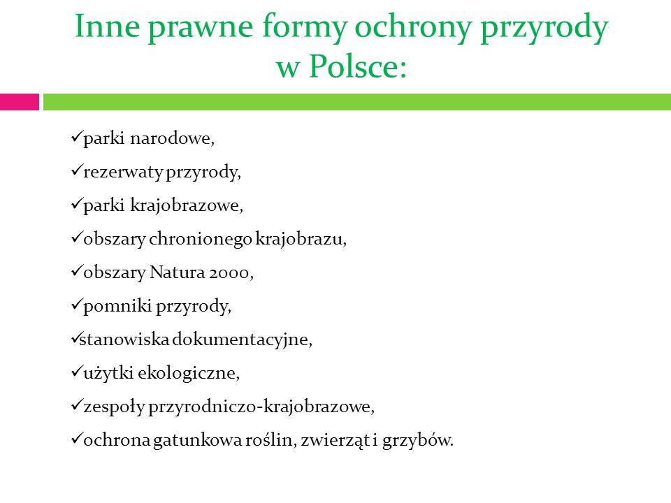 Inne prawne formy ochrony przyrody w Polsce: parki narodowe, rezerwaty przyrody, parki krajobrazowe, obszary chronionego krajobrazu, obszary Natura 2000, pomniki przyrody, stanowiska dokumentacyjne, użytki ekologiczne, zespoły przyrodniczo-krajobrazowe, ochrona gatunkowa roślin, zwierząt i grzybów.