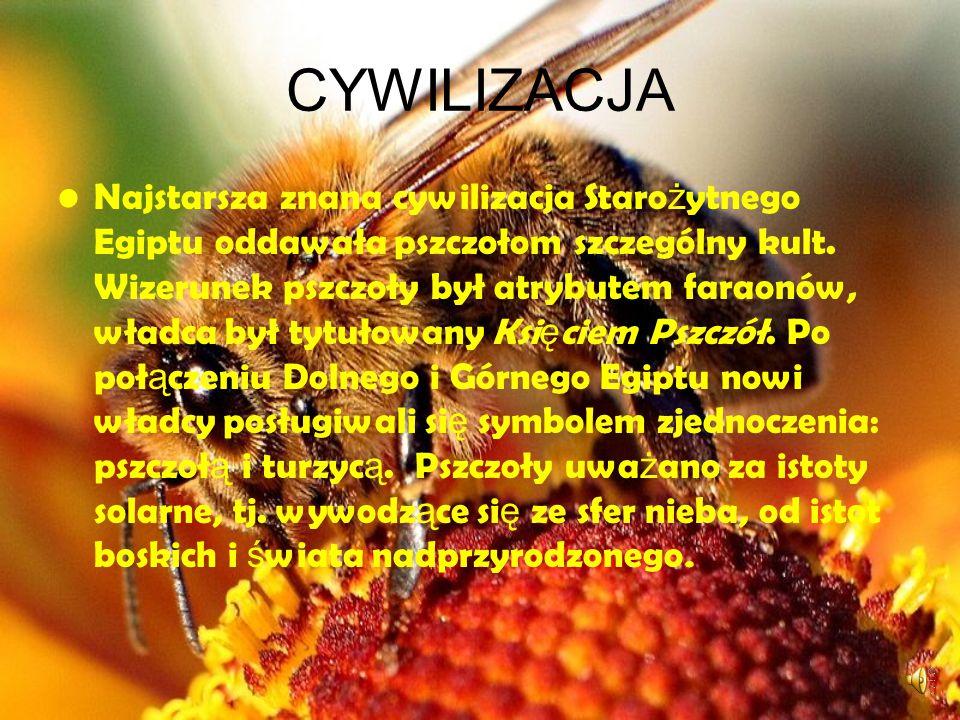 INFORMACJE Pszczoły intrygowały człowieka od najdawniejszych czasów. Wśród cywilizacji starożytnych pozyskiwanie produktów pszczelich stanowiło ważną
