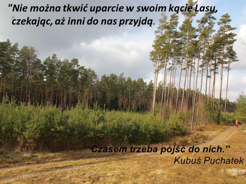 Nie można tkwić uparcie w swoim kącie Lasu, czekając, aż inni do nas przyjdą.