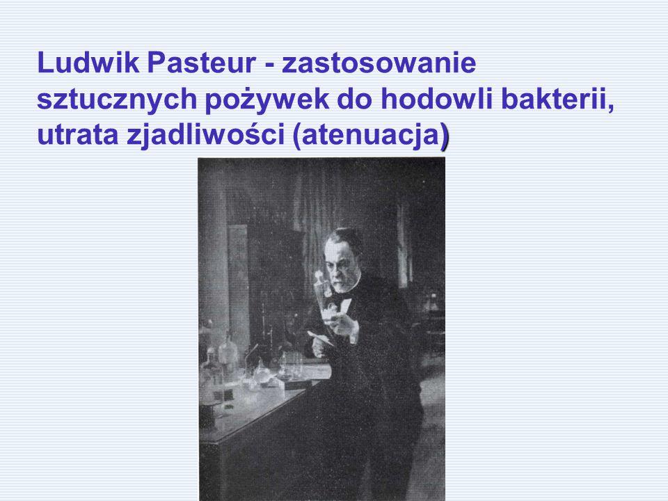 ) Ludwik Pasteur - zastosowanie sztucznych pożywek do hodowli bakterii, utrata zjadliwości (atenuacja)