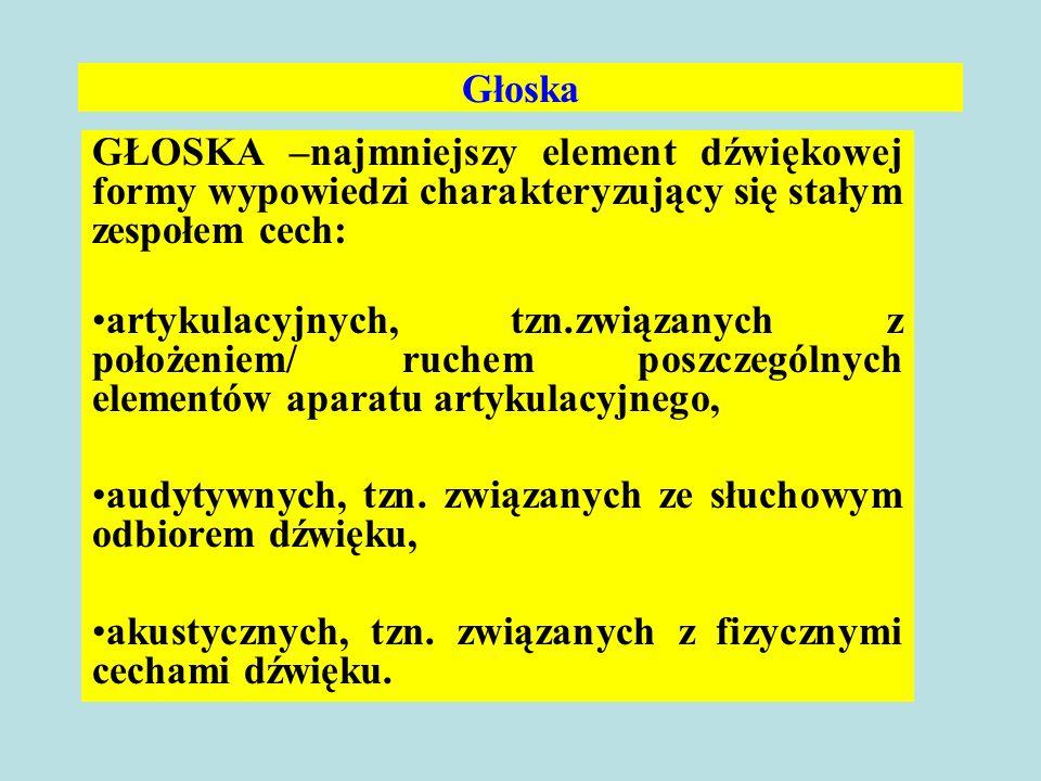 Głoska GŁOSKA –najmniejszy element dźwiękowej formy wypowiedzi charakteryzujący się stałym zespołem cech: artykulacyjnych, tzn.związanych z położeniem