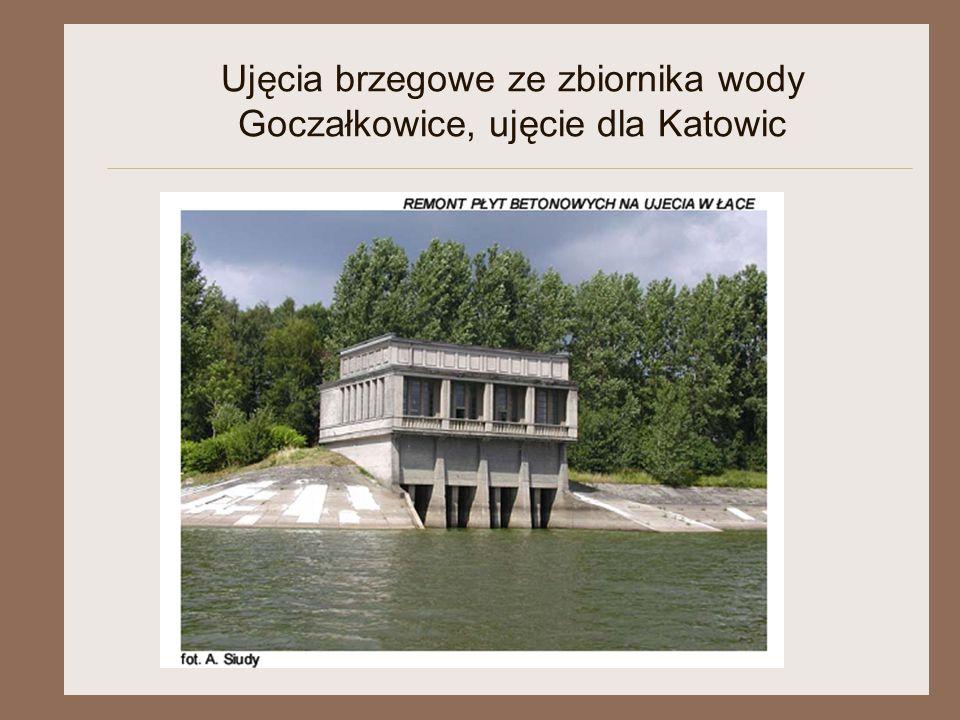 Ujęcia brzegowe ze zbiornika wody Goczałkowice, ujęcie dla Katowic