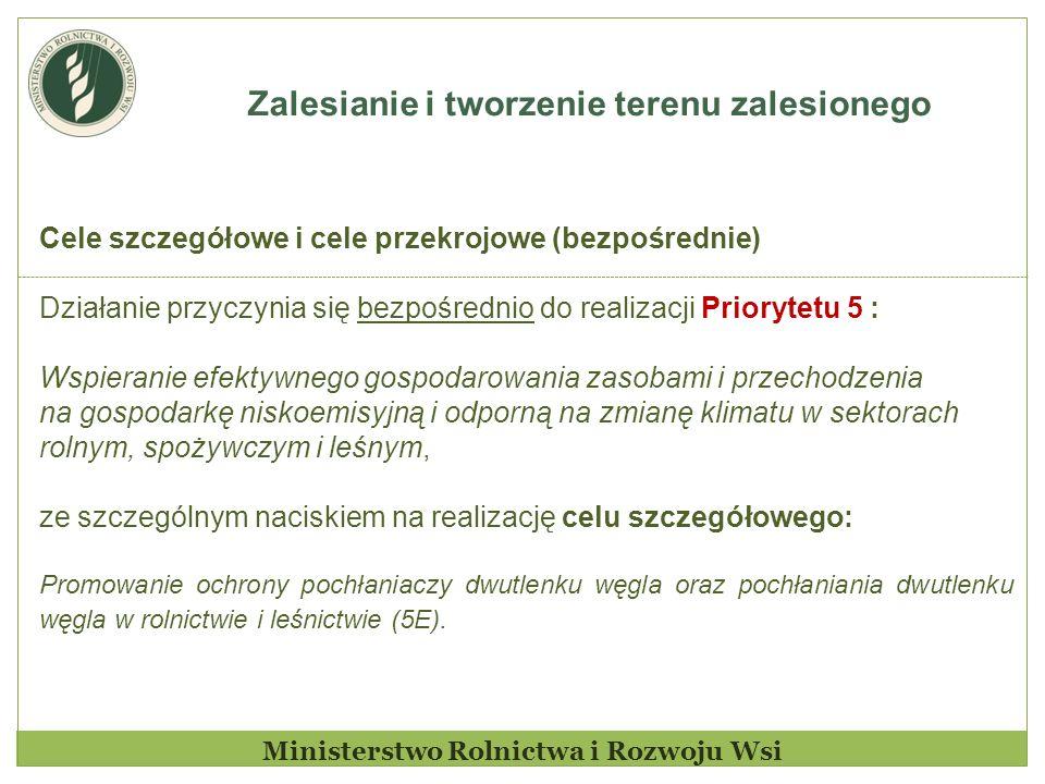 Zalesianie i tworzenie terenu zalesionego Ministerstwo Rolnictwa i Rozwoju Wsi Cele szczegółowe i cele przekrojowe (bezpośrednie) Działanie przyczynia