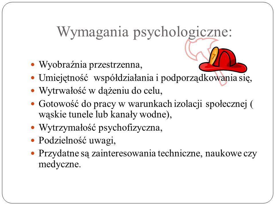 Wymagania psychologiczne: Wyobraźnia przestrzenna, Umiejętność współdziałania i podporządkowania się, Wytrwałość w dążeniu do celu, Gotowość do pracy