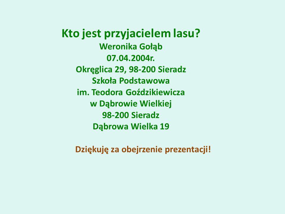 Kto jest przyjacielem lasu. Weronika Gołąb 07.04.2004r.