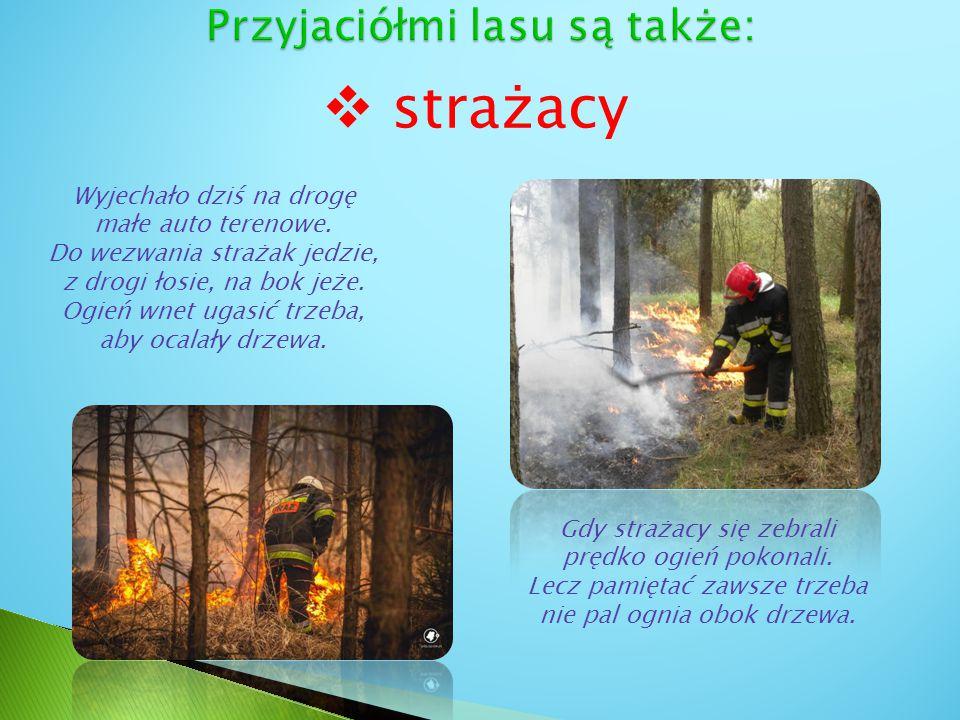  strażacy Wyjechało dziś na drogę małe auto terenowe. Do wezwania strażak jedzie, z drogi łosie, na bok jeże. Ogień wnet ugasić trzeba, aby ocalały d